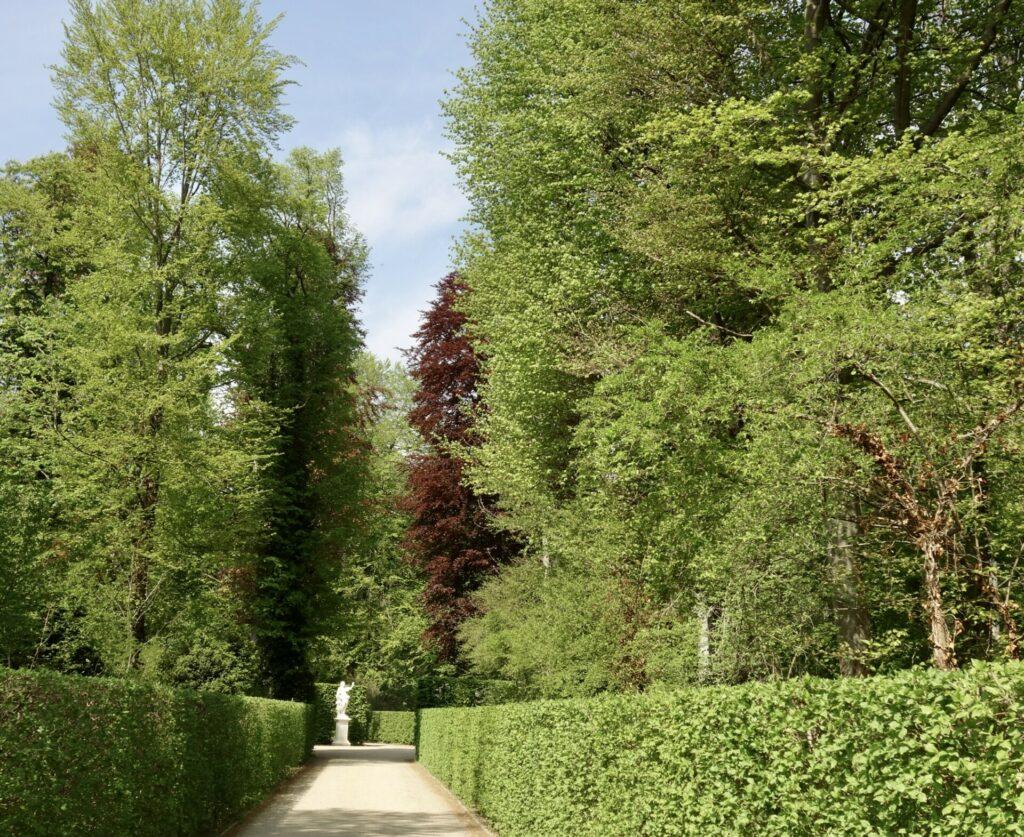 Sichtachse Park Sanssouci