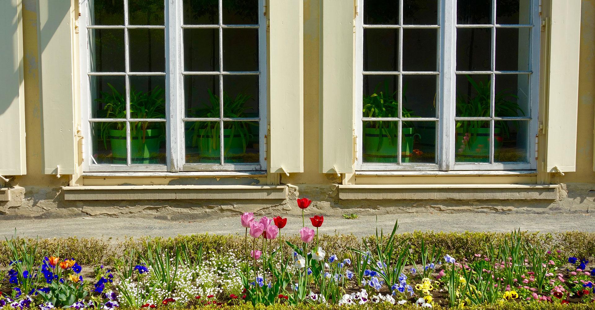 Blumenrabatte vor Palais