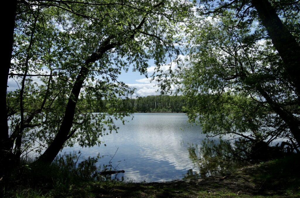 Blick auf den Großen Plessower See